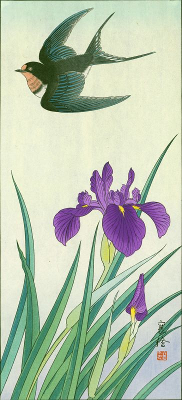 Hashimoto Yuzuru (Jo) Japanese woodblock Print - Swallow and Iris