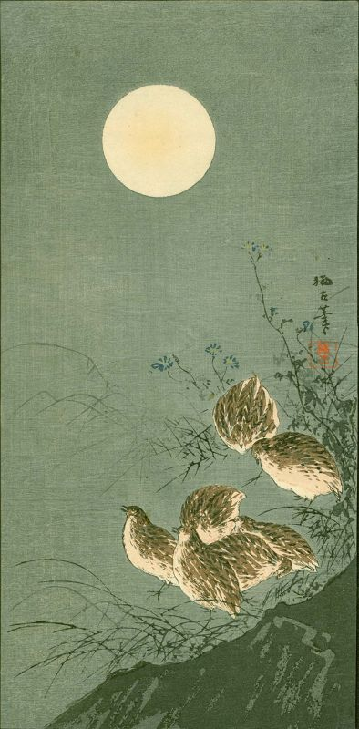 Aoki Seiko Japanese Woodblock Print - Birds and Moon - Rare