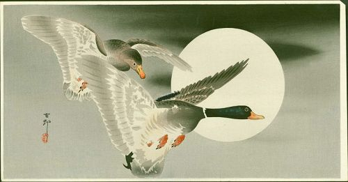 Ohara Koson Japanese Woodblock Print - Mallards in Flight and Moon