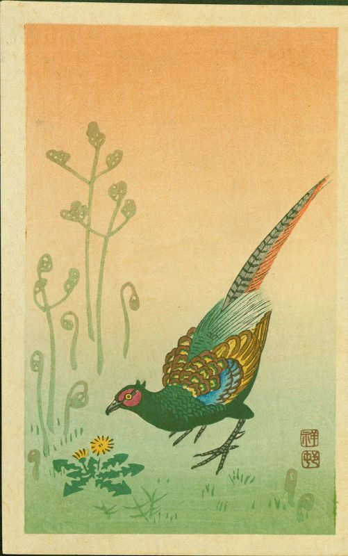 Ohara Koson (Shoson) Japanese Woodblock Print - Pheasant and Grasses