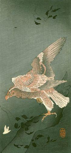 Ohara Koson Japanese Woodblock Print - Eagle Watching Small Bird