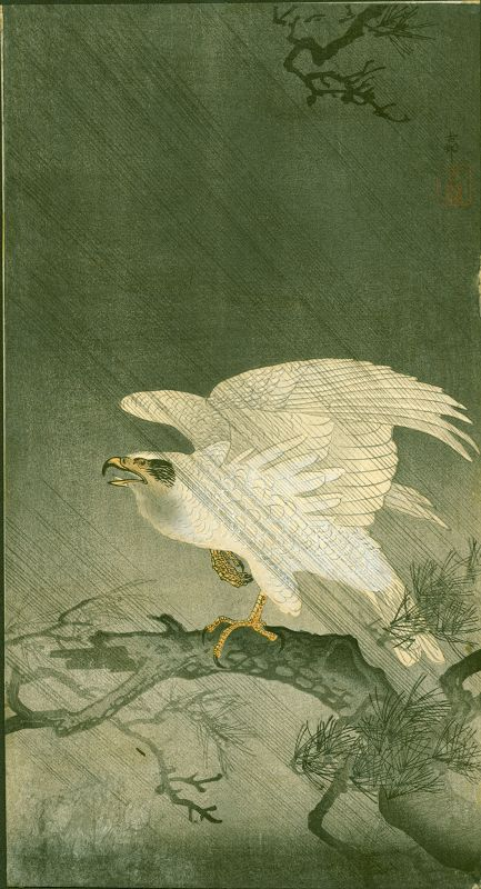 Ohara Koson  Woodblock Print -  White Eagle On Branch in Storm RARE