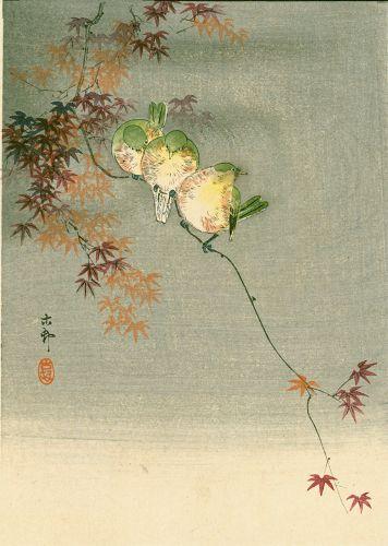 Ohara Koson Woodblock Print -Three Birds on a Maple Tree 1910 SOLD