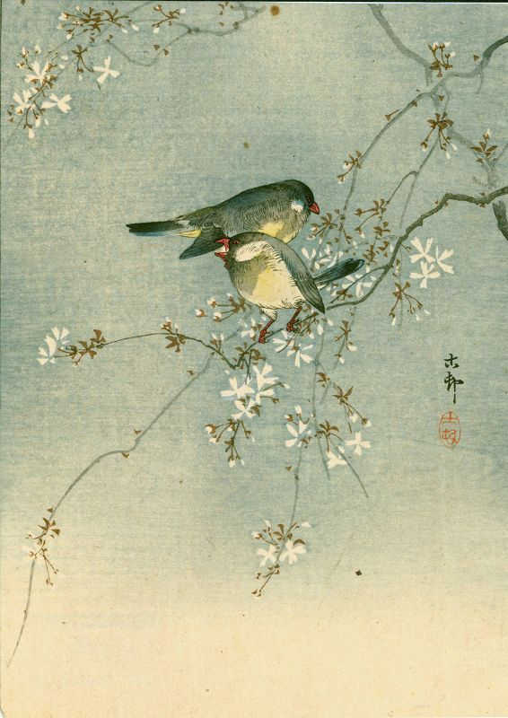 Ohara Koson Japanese Woodblock Print -Two Birds on a Cherry Tree 1910