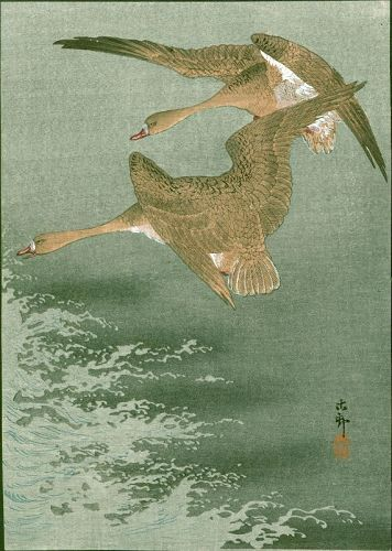 Ohara Koson Japanese Woodblock Print - Wild Geese Over The Sea 1910