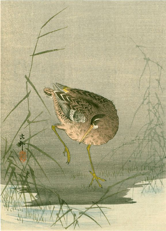 Ohara Koson Japanese Woodblock Print - Snipe at Waterside 1910