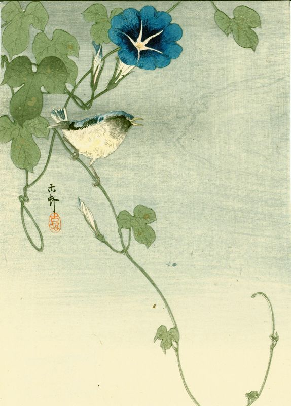 Ohara Koson Japanese Woodblock Print  - Bird and Morning Glory 1910