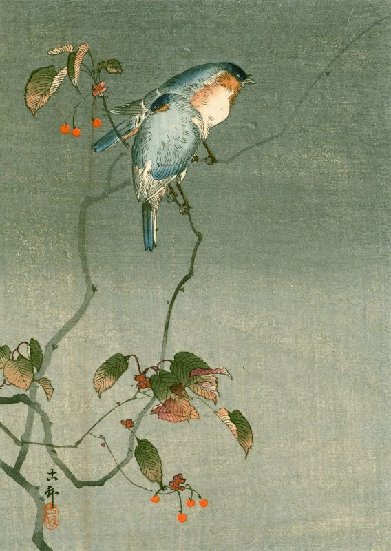 Ohara Koson Japanese Woodblock Print -Two Birds (Wrens) on a Tree 1910