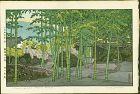 Toshi Yoshida Woodblock Print- Bamboo Garden, Hakone Museum 1st ed.