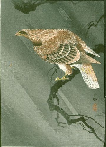 Ohara Koson Japanese Woodblock Print - Eagle On Branch in a Storm 1910