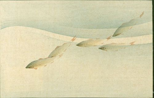 Aoki Seiko Japanese Woodblock Ayu Fish In the Stream - 1910