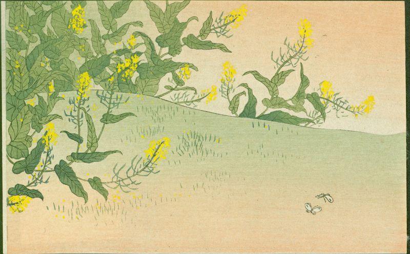 Japanese Woodblock Print - Spring Field - 1910 Matsumoto