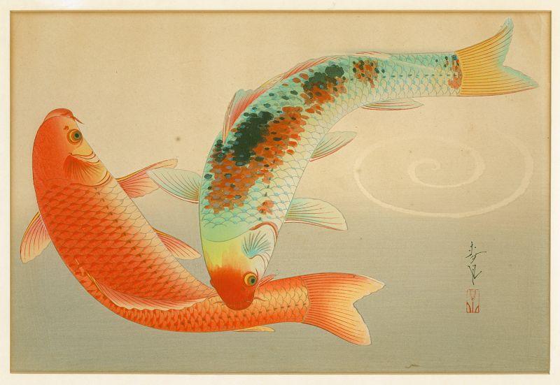 Ohno Bakufu Woodblock Print -Brocade Carp -Higoi -Familiar Fishes Rare