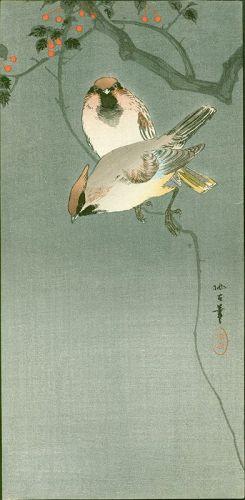 Aoki Seiko Japanese Woodblock Print - Waxwings - 1910 Rare