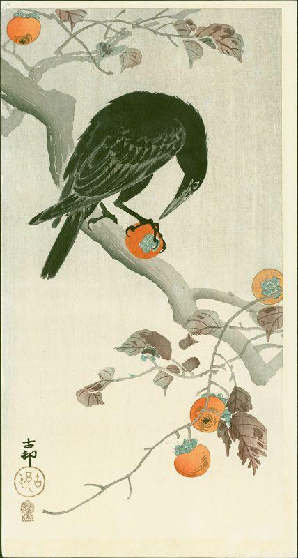 Ohara Koson Woodblock Print - Crow Eating Persimmon -Kokkiedo SOLD