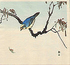 Seiko Okuhara Woodblock Print Blue Bird 1910s SOLD