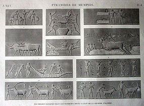 NAPOLEON'S EGYPTIAN EXPEDITION, DESCRIPTION DE L'EGYPTE