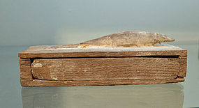 AN EGYPTIAN VOTIVE WOOD SARCOPHAGUS  OF AN ICHNEUMON