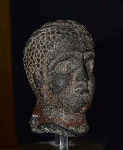 AN EGYPTIAN BASALT HEAD OF A PRIEST