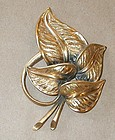 TORTOLANI'S  LEAVES BROOCH