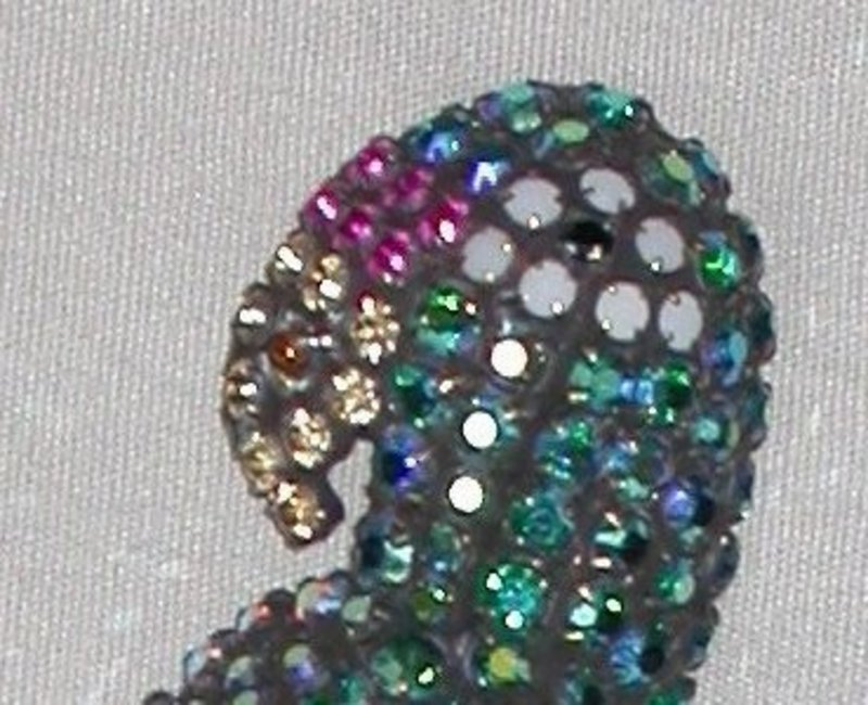DOROTHY BAUER PARROT BROOCH