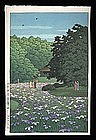 Hasui Woodblock - Iris Garden at Meiji Shrine