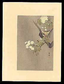 Japanese Woodblock Print by Tsuji Kako