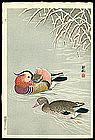 Shoson Woodblock - Mandarin Ducks - Early Printing