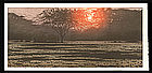 Toshi Yoshida Woodblock - One Day in East Africa #9
