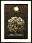 Beautiful Joichi Hoshi Woodblock - Moon and Tree
