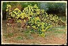 Rare Fujio Yoshida Watercolor - Flowering Bushes