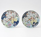 "A Pair of Chinese Export Plates w. ""Tobacco Leaf"" Pattern, 19th C."