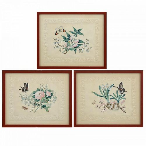 Three Fine Chinese Trade Botanical Paintings on Paper, Early 19h C.