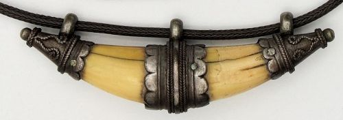 Tooth Amulet Large with Silver & Silver Snake Chain Antique Sri Lanka