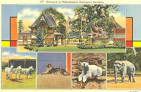 Postcard, Philadelphia Zoological Garden