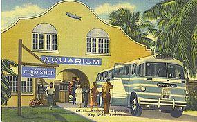 """Municipal Aquarium, Key West, Florida"""