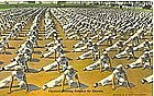 """Physical Training Program for Recruits"""