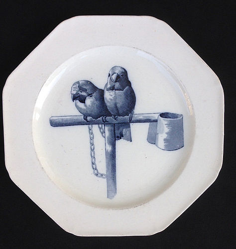 Perched parrots, Aesthetic Canova plate, Staffordshire, Victorian