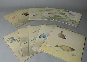 Japanese Fish Paintings by Ohono Bakufu