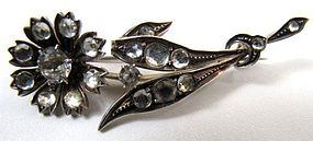 Paste and Silver Brooch, Flower