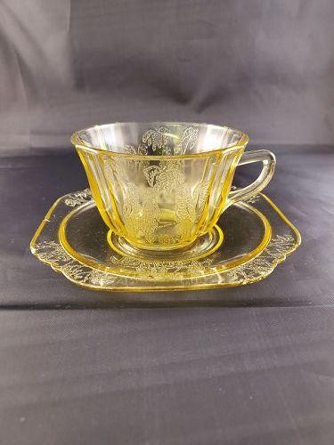 Parrot / Sylvan Amber Cup and Saucer