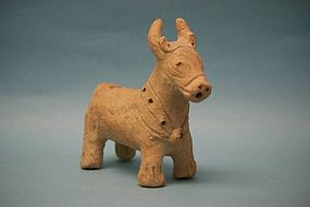 Iron Age III Pottery Bull with Bridle