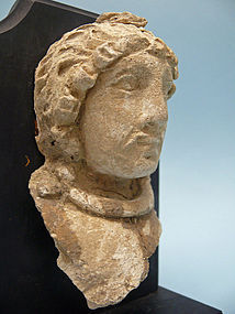 Gandharan Stucco Fragment, Head of a Man
