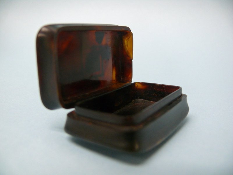 Early 19th Century French Tortoise Shell Snuff Box