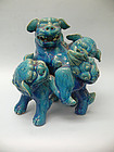 Qing Dynasty Ceramic Turquoise Glazed Buddhistic Lions