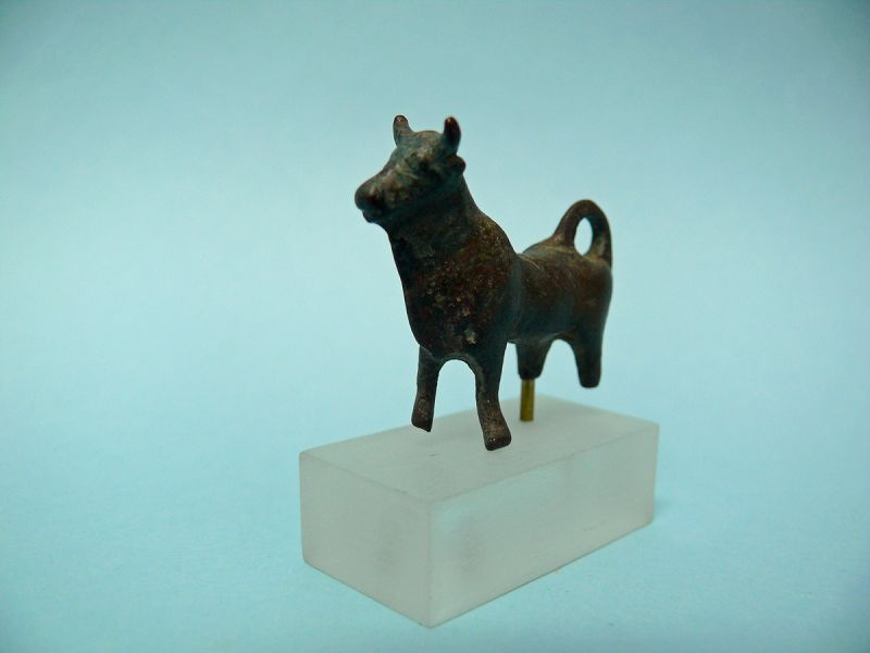 Iron Age Bronze Miniature Bull, curved tail