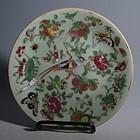 Chinese Porcelain Famille Rose Celadon Dish, Daoguang
