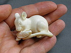 Japanese Carved Ivory Netsuke of Mouse Rat Eating Corn