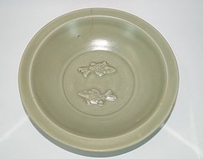 Rare Song Yuan dynasty longquan celadon large two fish plate