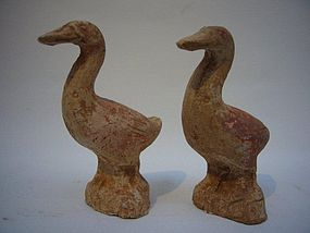 Pair of Tang Pottery Geese